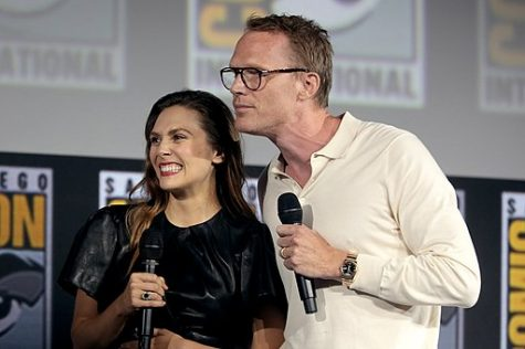 Elizabeth Olsen and Paul Bettany (Wanda Maximoff and Vision) star as the title characters of the new  Disney+ show WandaVision.