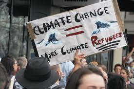 Human Factor in Climate Change: What Can You Do?